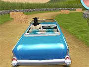 Animale conduc masini 3d